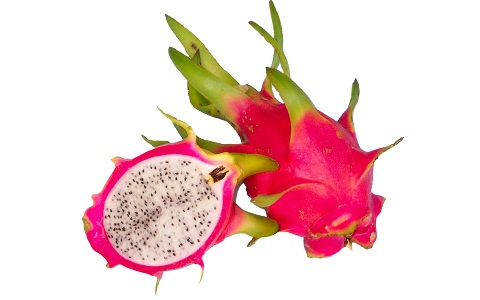 xopark7Pitaya—Fruit-du-dragon—-Hylocereus-undatus—Strawberry-Pear