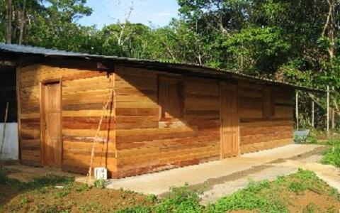 xopark2Acajou-de-Guyane—Acajou-amer