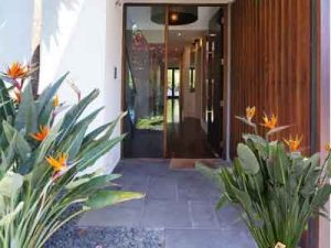 Bird of Paradise : Quelles sont les meilleures plantes pour décorer la porte d'entrée