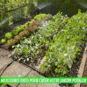 Meilleures-idées-pour-créer-votre-jardin-potager-accès facile à l'eau
