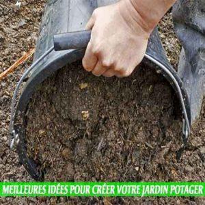 Démarrez les plantes dans un sol riche, Meilleures idées pour créer votre jardin potager