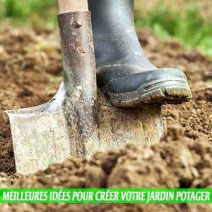 sols argileux et Meilleures idées pour créer votre jardin potager