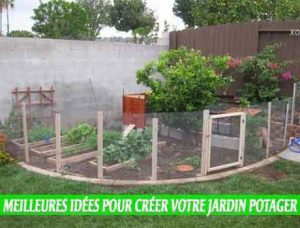 Empêchez les animaux d'entrer undes Meilleures idées pour créer votre jardin potager
