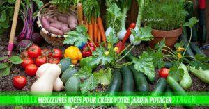 Meilleures idées pour créer votre jardin potager